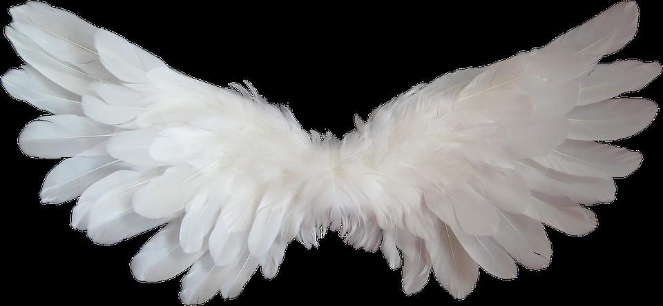 bižićne čestitke Druženje s Anđelima bižićne čestitke